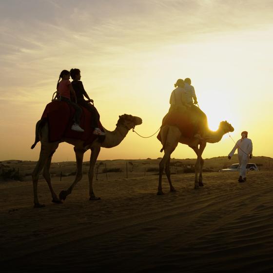 Hotel + Tour: Dubai