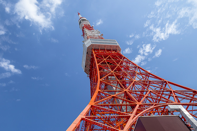 Tokyo 4 Days: Tour + Hotel Package