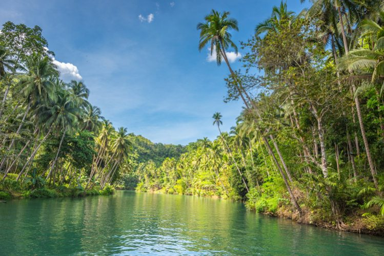 View of Loboc River at Bohol island