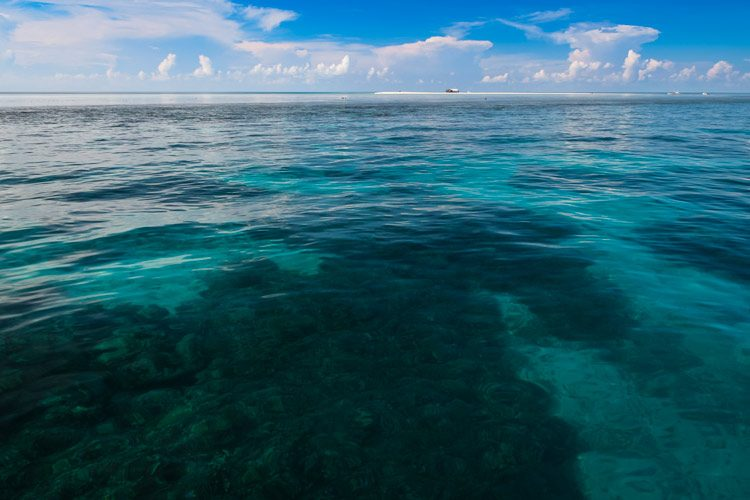 Tubbataha reef seascape, Palawan